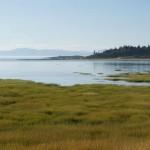 fleuve st laurent - 2011 - 2292345678368