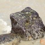 fleuve st laurent - 2011 - 2292347598416